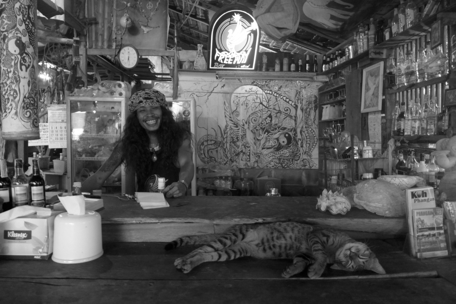 picture of a cat sleeping on a bar